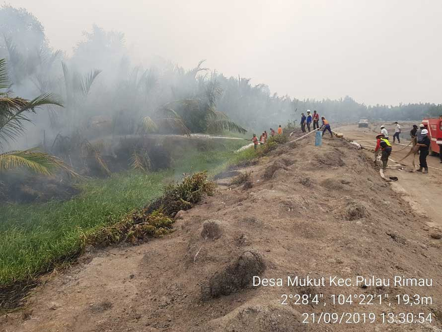 PT Hindoli fire- fighting team contains the fire outside of plantation's boundary in Mukut, South Sumatra